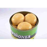 Best Light Yellow Canning Mushrooms , Whole Button Mushrooms In Jars wholesale