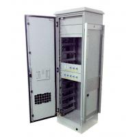 Best Lithium Iron Battery IP55 Outdoor Cabinet 240V AC Heater With 10 Pieces Battery Modules wholesale