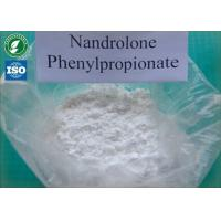 Buy cheap Tightly packed Nandrolone phenylpropionatewith safe Delivery and 99% Purity white powders CAS 62-90-8 from wholesalers