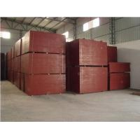 Best formwork plywood with poplar core wholesale