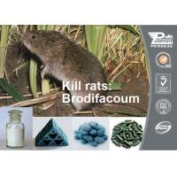 Best Red Columnar Solid Or Grains Rodenticide Products Brodifacoum 0.005% Bait 56073-10-0 wholesale