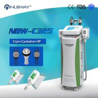 Best Cryotherapy Fat freezing Cryolipolysis Slimming Machine For cellulite reduction wholesale