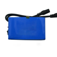 Best IEC62133 12V 2500mAh Lithium Ion Polymer Battery Pack wholesale