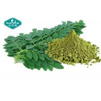 Best Healthy Natural Botanical Extracts , Moringa Leaf Extract Powder For Weight Loss wholesale