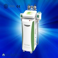 Cheap Fat dissolving cryolipolysis machine / vacuum slimming beauty machine with Bottom Price for sale