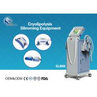 Best Innovative Cryolipolysis Freeze Fat Reduction Machine with 4 Handles Work Cryotherapy With USA Pump wholesale