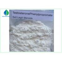 Best 99% Purity Raw Hormone Powders Steroids Testosterone Phenylpropionate for Muscle Mass wholesale