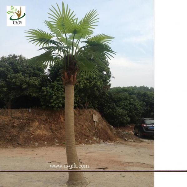 details of uvg ptr038 eco friendly decorative outdoor fake palm trees for sale 105570315. Black Bedroom Furniture Sets. Home Design Ideas