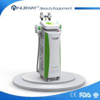 Best Effective 3 in 1 cryolipolysis machine / cryolipolysis fat freeze slimming machine wholesale