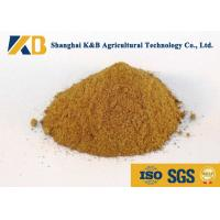 Best Promote Animal Growth Poultry Feed Products With Fresh Fish Raw Material wholesale