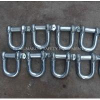 Best Marine shackles steel shackles stainless steel shackles Hot Dip Galvanized Forged G2150 D Shackle wholesale