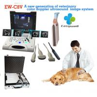 Best Laptop Color Doppler ultrasound system EW-C8V with convex probe for veterinary with specialty obstetric measurement soft wholesale