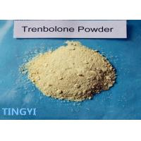 China CAS 10161-33-8 Trenbolone Acetate Powder Bulking Cycle For Muscle Growth on sale