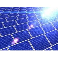 Best Solar Panel (80W) wholesale