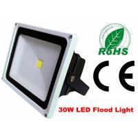 Best Waterproof 30w Exterior Led Flood Lights Security Die Casting Aluminium Alloy wholesale