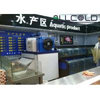 Quality Photoelectric Switch Ice Flake Maker Machine  Integrated Convenient 2 Tons / Day wholesale