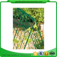 "Best Deluxe Garden Plant Trellis For Cucumbers , Steel Cucumber Garden Trellis Each side is 32"" W x 48"" H wholesale"