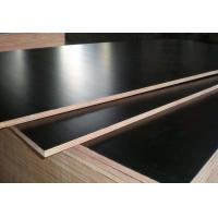 Best Black Color Phenolic Film Faced Plywood 12mm - 18mm Thickness Environmental Friendly wholesale