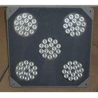 Best 75w explosion-proof LED Flood light wholesale