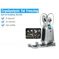 Best Multifunction Cryolipolysis Body Slimming Machine , Fat Freezing Body Slimming Equipment wholesale