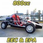 650cc EEC & EPA Racing Buggy / Go Kart