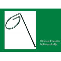 Best Metal Garden Plant Supports Length 18 inches Width 0.98 inches color green Plant support type Stake wholesale