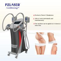 China CE Cool Tech Cryolipolysis Fat Freeze Slimming Machine For Weight Loss on sale