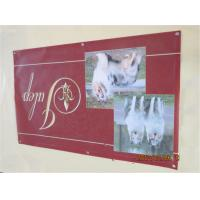 Best Indoor Vinyl Customized Banners For Party For Store Displays Seamless wholesale