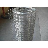 Best Hot Dip Galvanized Welded Wire Mesh Roll For Wall Protect Warm Or Fence wholesale