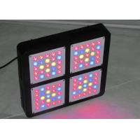 China LED grow light 300 Watt Full Spectrum for Indoor Greenhouse grow tent plants grow led light Veg and Bloom mode on sale