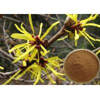 Best Antipruritic Tannin Hamamelis Virginiana Extract , Witch Hazel Extract For Hair Color Protection wholesale