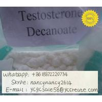 Raw Steroid Powder Testosterone Decanoate