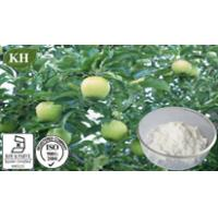 Buy cheap Apple Root Extract,Phloridzin 40%, 60%, 80%, 90%, 95%, 98% by HPLC from wholesalers