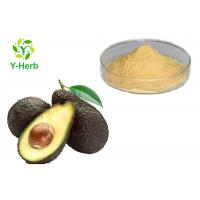 Best Avocado Powdered Fruit Juice Concentrate Avocado Seed Leaf Extract Capsules Powder wholesale
