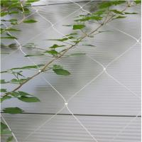 Best Stainless Steel Wire Rope Mesh Net As Architecture Plant Trellis wholesale