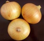 Best no broken skin no scar long shelf life farm fresh onions wholesale