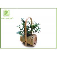 Best Attractive Indoor Bamboo Flower Pots For Various Succulents Plants wholesale
