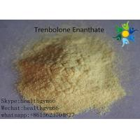 Best Natural Safe Trenbolone Powder Anabolic Legal Steroids For Muscle Building wholesale