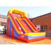 Best Dolphin Inflatable Slide With Water Pool wholesale