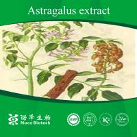 Best China manufacturer natural astragalus root extract with competitive price wholesale