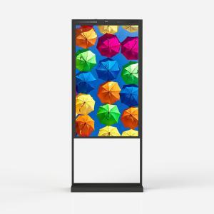 Best 55 Inch Window Advertising Display Window Facing 3000 Nits Lcd Digital Signage wholesale