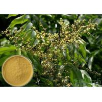 Best Soapnut Saponin Cosmetic Raw Materials Soapberry Extract For Whitening Spot wholesale