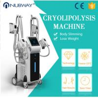 China Factory price CE approved 4 cryo handles fat freezing weight loss cryolipolysisfa cool sculpting  machine on sale