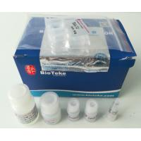 Best Total RNA Extraction Kit  , Total RNA Purification Kit High Pure 50ml / 100ml wholesale