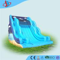 cheap huge inflatable backyard water slide customized bouncy 10x6 5x8