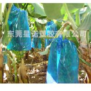 Best Plastic PE Banana  Bunch Protection bag wholesale