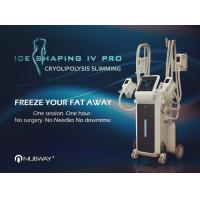 China 2018 New Arrivals! Ice Shaping Cool body sculpting Cryolipolysis fat freezing Machine with 4 handles on sale