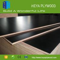 Best Concrete formwork board shuttering plywood 8 - 18 mm suppliers wholesale