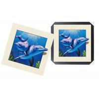 Best Modern 3d Custom Lenticular Printing With PS Frame , 5d Deep Effect Photos wholesale