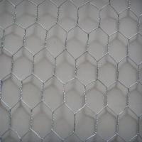 Best fence wire poultry hexagonal netting wholesale